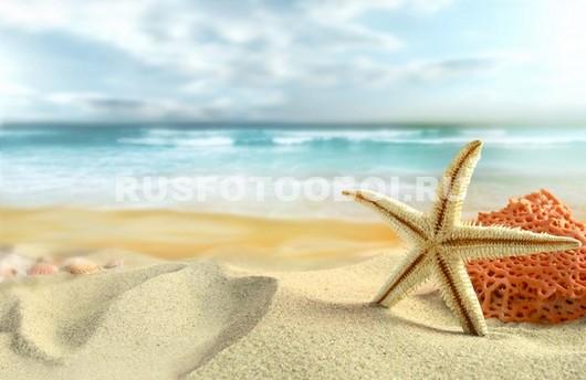 Звезда на песке