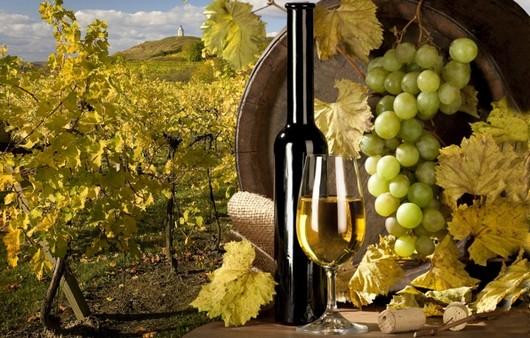 Фотообои Белое виноградное вино