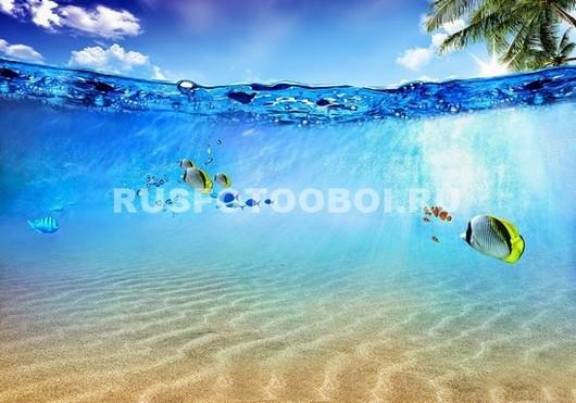 Рыбки в теплом море