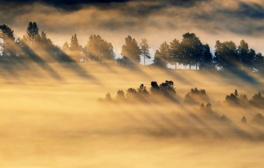 Поле в лучах солнца через облака