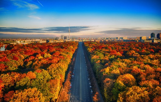 Осенний лес с дорогой с высоты птичьего полёта