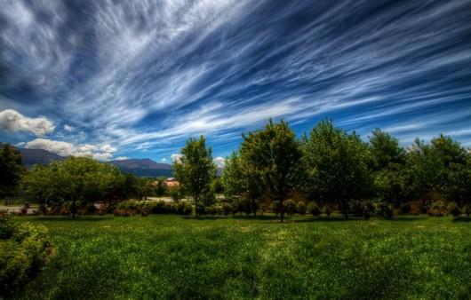 Облака и трава