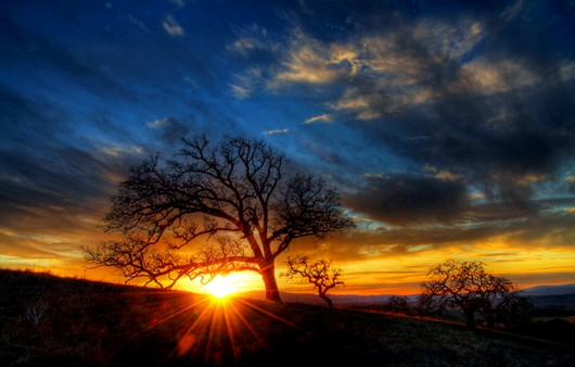 Фотообои Облака на закате