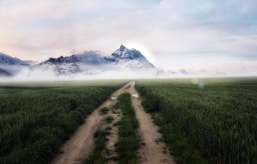 Поле тумана