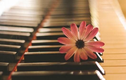 Клавиши с цветком