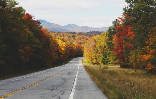Пейзаж дороги