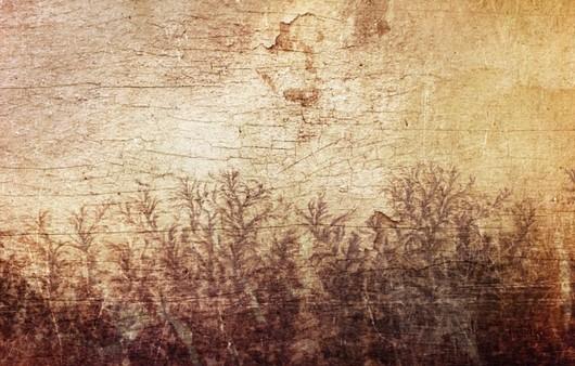 Текстура дерево с гербарием цветов