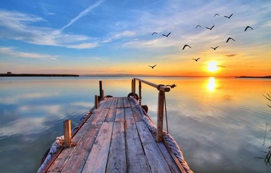 Фотообои Деревянный пирс с кружащимися чайками в небе