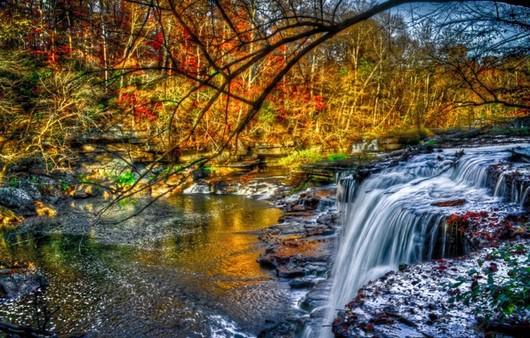 Водные перекаты на  лесной речке