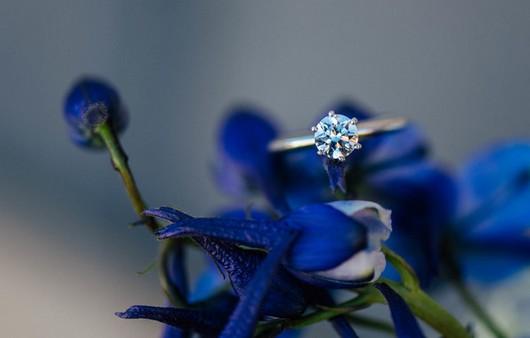 Фотообои Обручальное колечко в цветах