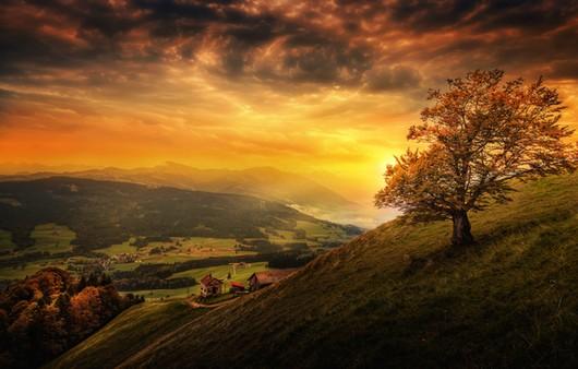 Грозовые тучи в горах и гнущиеся от ветра деревья