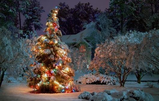 Новогодняя ёлка украшенная в саду