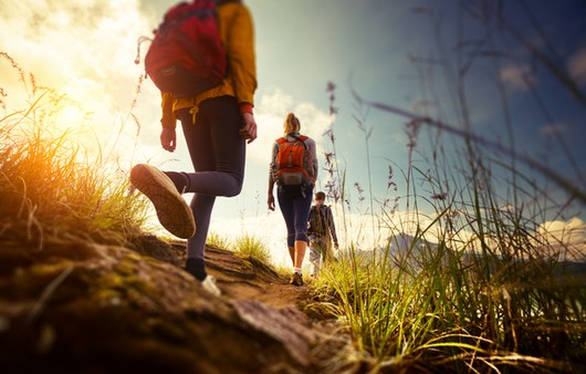 Путешественники на горной тропе