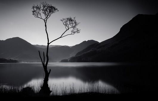 Фотообои Чёрно- белое волшебство природы