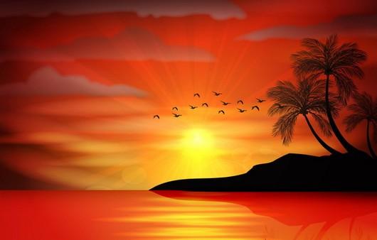 тропический пейзаж