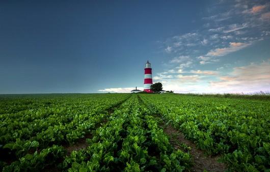 маяк на природе
