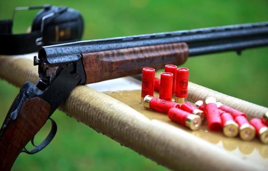 Фотообои стрельбище с ружья