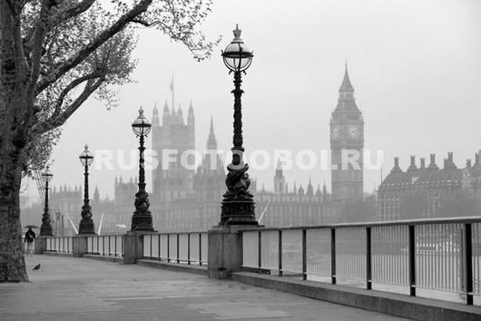 Парламент в тумане