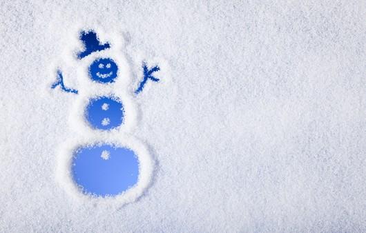 Фотообои снеговик из печенок