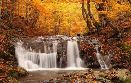 водопад осеню в лесу
