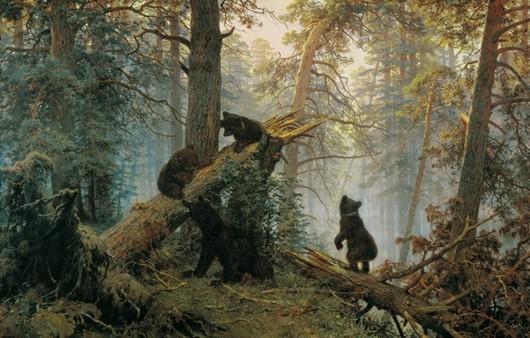 Фотообои Утро в сосновом лесу