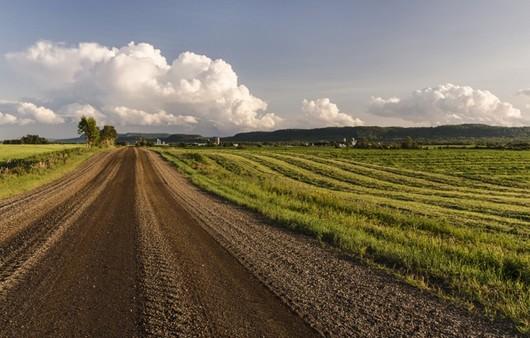 дорога вдоль полей
