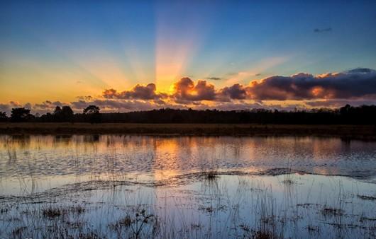 восход у озера