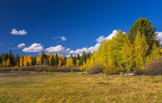 Фотообои начало осень