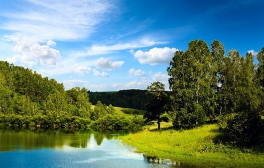 лужайка у реки