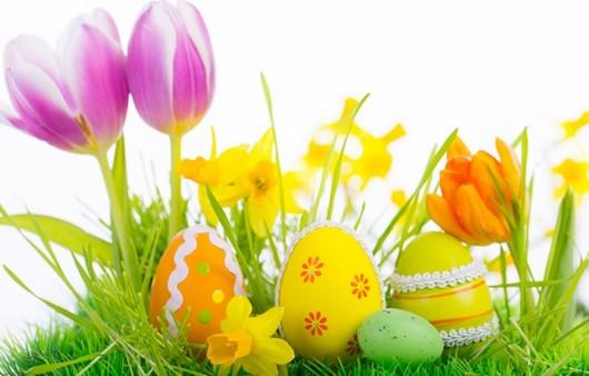 цвета и яйца