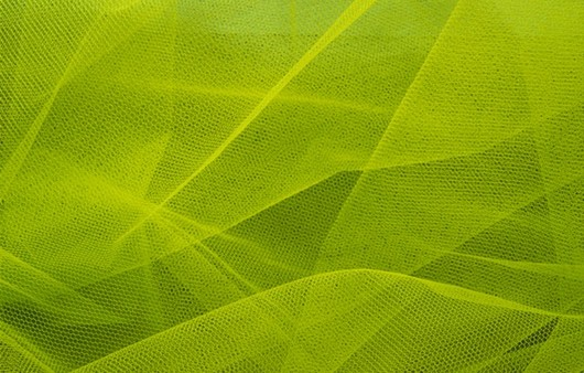 Фотообои зеленая текстура