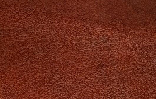 текстура кожи