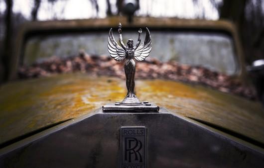 Фотообои эмблема ролс Роуз