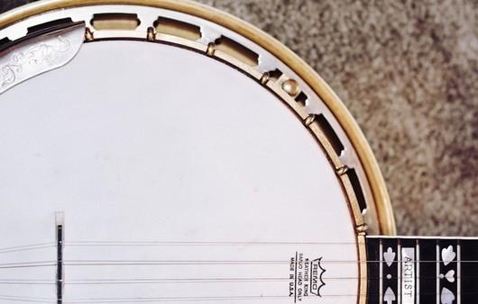 Фотообои белая банджо