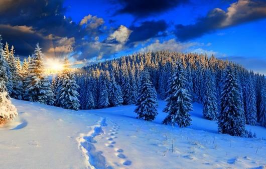 зимние дали