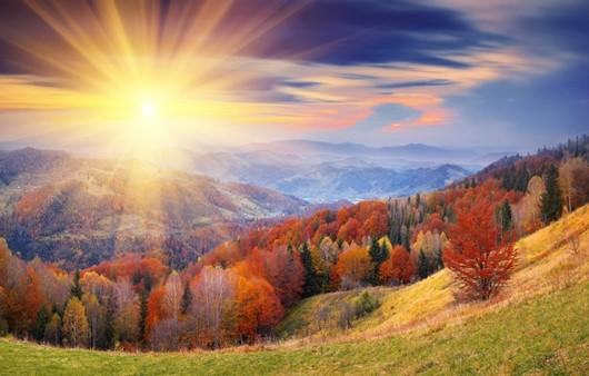 Фотообои Осенний пейзаж