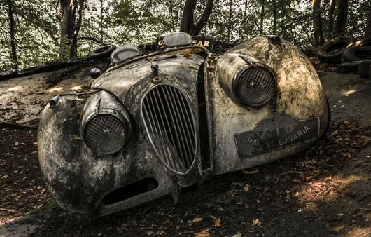 Заброшенная машина в лесу