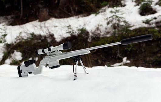 Фотообои Снайперская винтовка Мосина