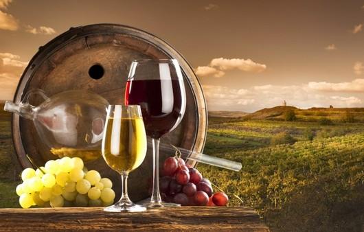 Фотообои Натюрморт с виноградными лозами и вином