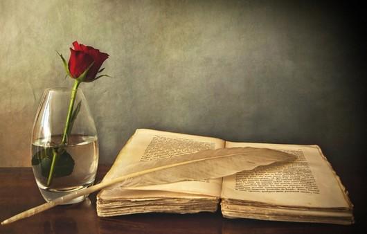 Роза и старая книга
