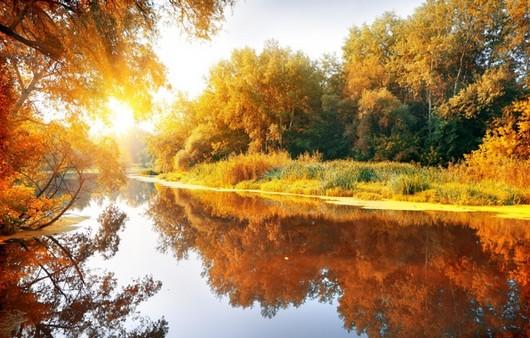 Фотообои Осеннее время года