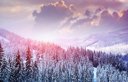 Пейзаж зимнего леса