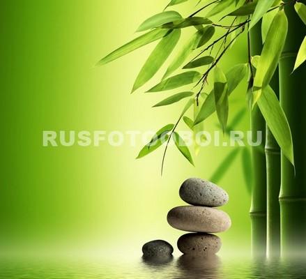 Сад комней и бамбук