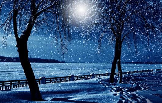 Фотообои Снежная природа