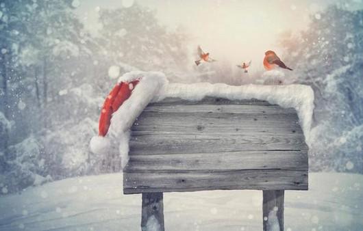 Фотообои Новогоднее настроение