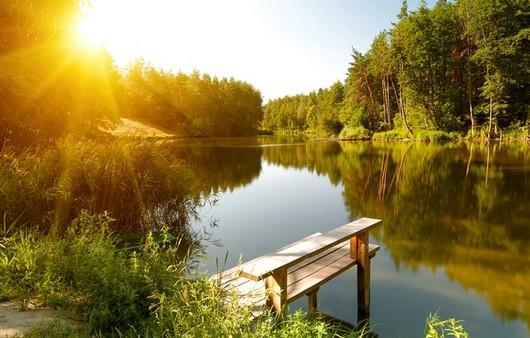 Фотообои Пейзаж с лесом и рекой