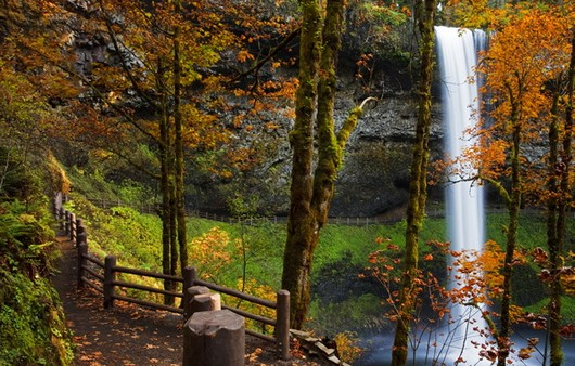 Фотообои Национальный парк США