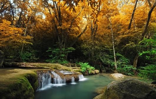Фотообои Осенняя природа