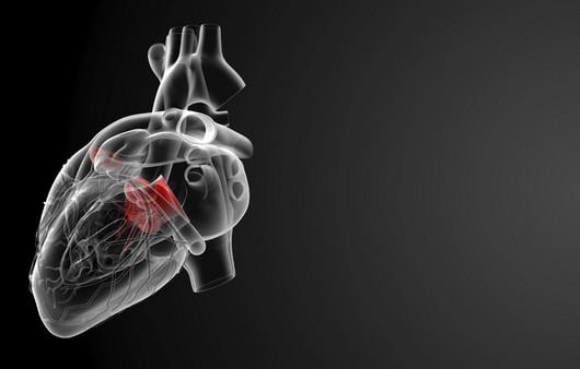 Рентген сердечного отдела