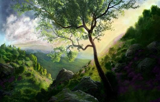 Дерево рядом с ущельем